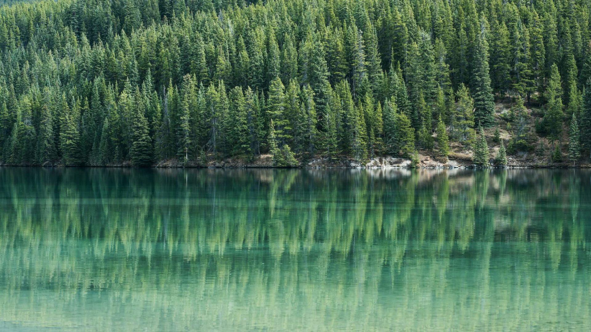 See in Kanada mit Spiegelung